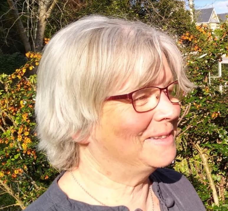 Lois Cameron, Talking Mats, UK
